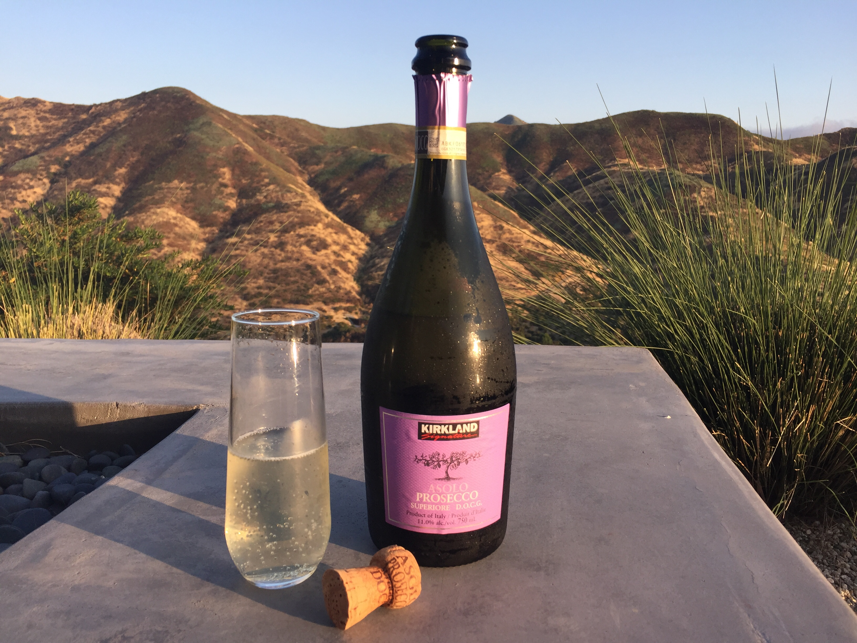 Bottle of Kirkland Signature DOGC Prosecco and the wine shown in a glass.
