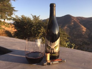 Bottle and glass of 2017 The Pundit Syrah from Tenet Wines and Costco
